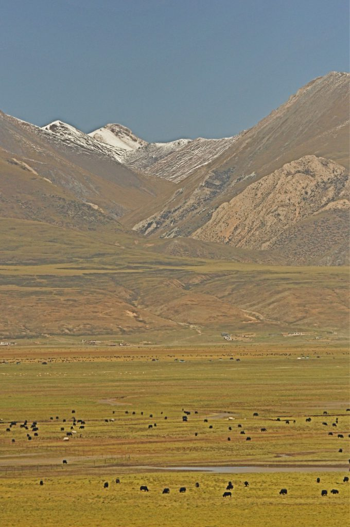 A ride with the Tibet Train from Lhasa to Shanghai