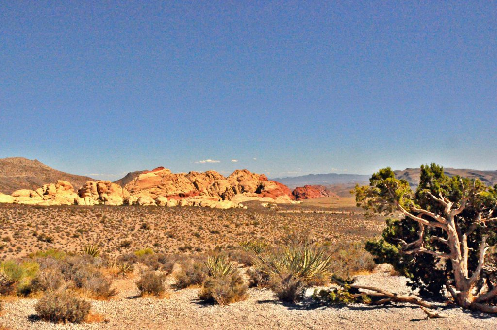 View of Red Rock Canyon, close to Las Vegas
