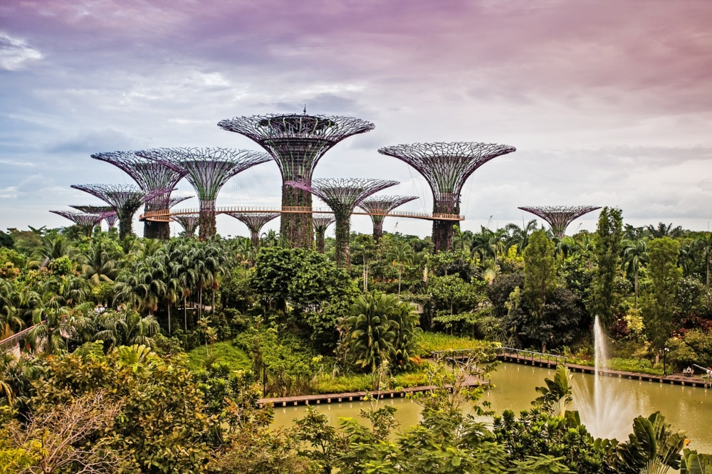 Singapore, a top place to visit with its Gardens by the Bay